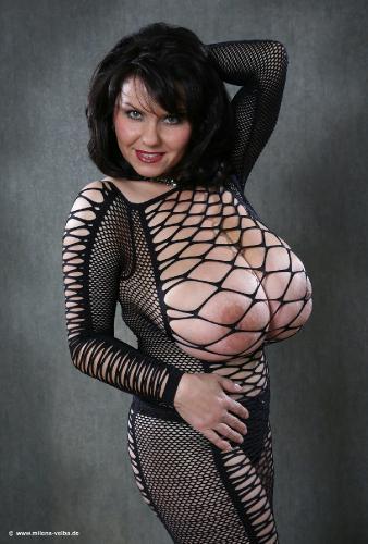 Net (2012 nov)
