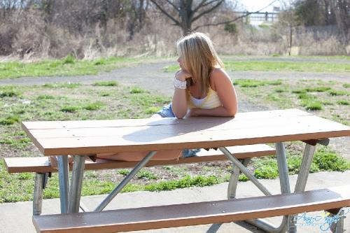 Set 0690 - Picnic Table