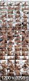Ally Breelsen interracial double anal (DAP) RS215 (2016) 480p