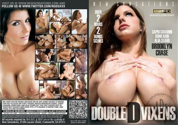 Double D Vixens (2013) HD 720p