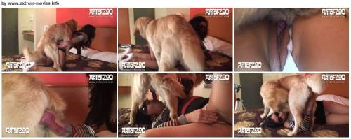 64d16990d9d76da4caf1502a8cbe32da - Bestiality Animal Porn Videos - Free Download ZooSex