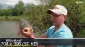Рыбачьте с нами. Видеоприложение №7. Июль (2016) DVDRip