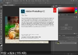 Adobe Photoshop CC 2015.5 17.0.1 + Plug-ins Nik Collection Portable (RU/Ml)