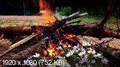Костер, огонь, птицы, музыка (2016) HDRip-AVC 1080p от waPBX
