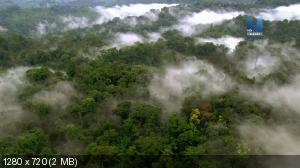 Как климат изменил ход истории / How Climate Made History [01-02] (2015) HDTVRip 720p