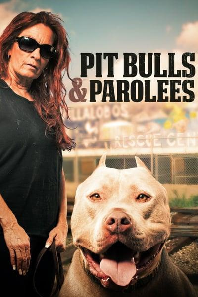 Pit Bulls and Parolees S12E03 Never Let Go 720p WEB x264-CAFFEiNE