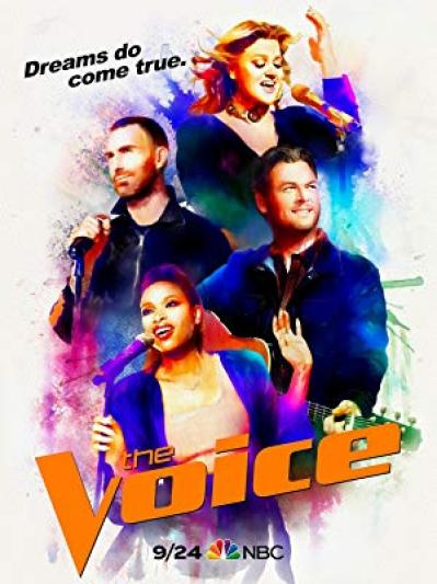The Voice S15E08 XviD-AFG